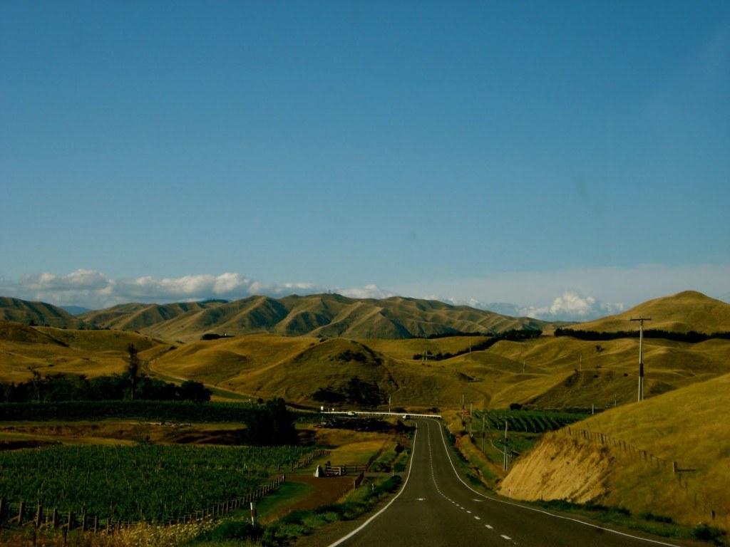 New Zealand Road Trip 3