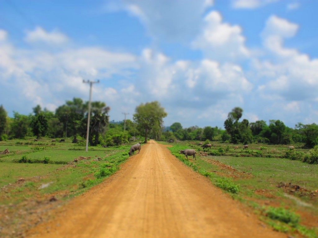 4000 Islands Laos 1