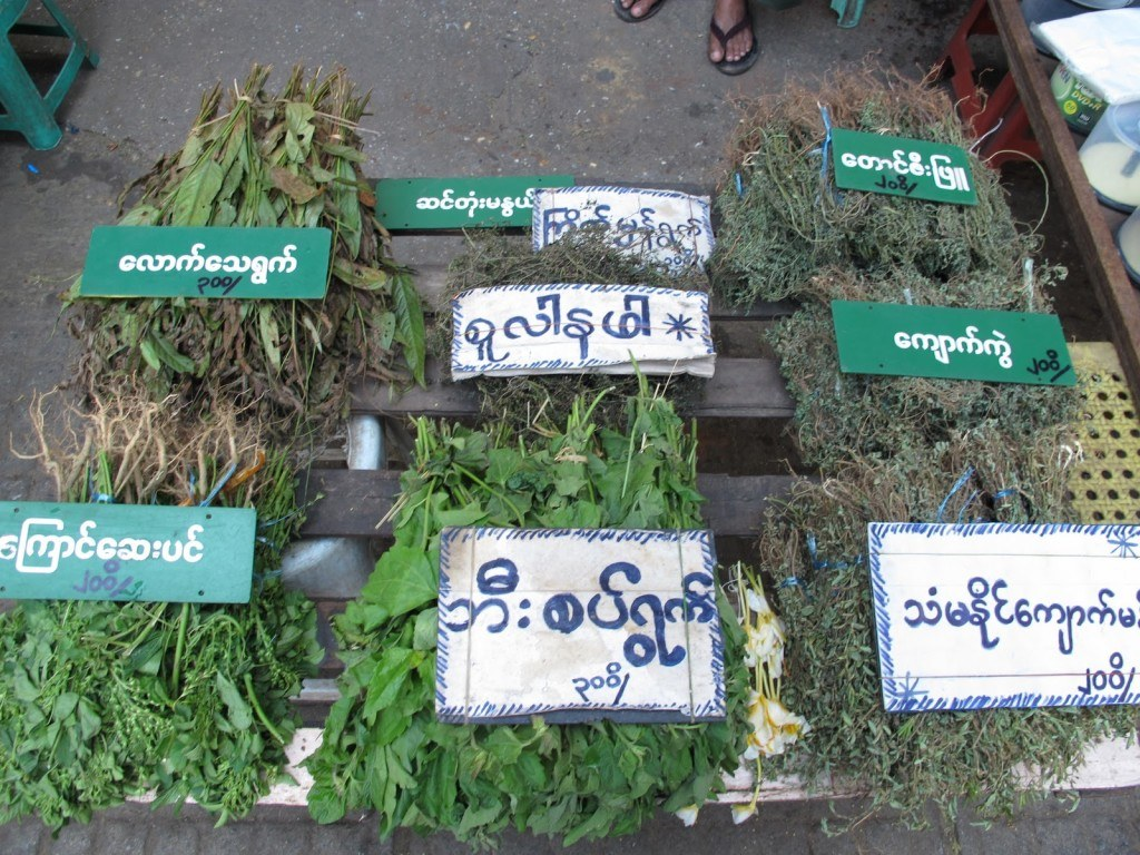 Yangon 8