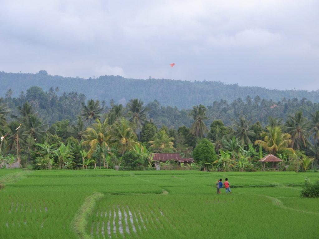 lovina-indonesia-15