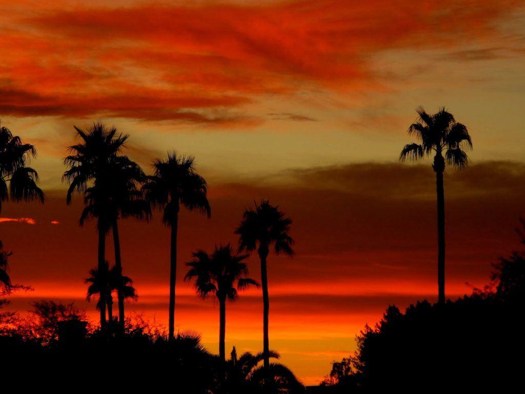 phoenix-sunset-1