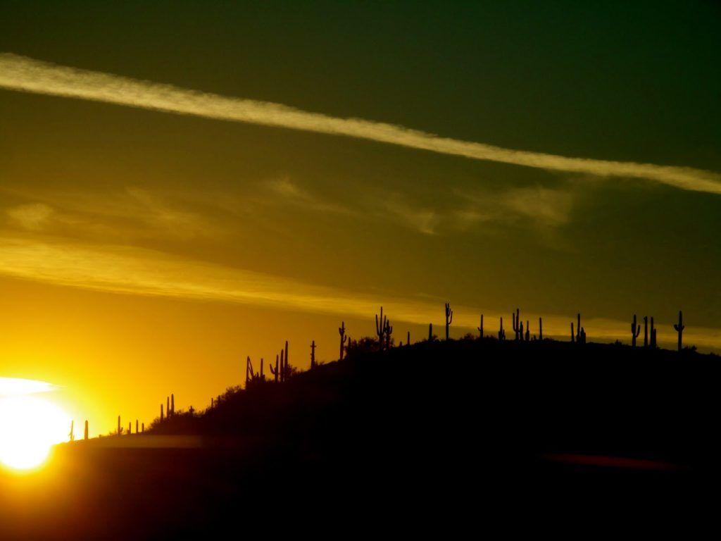 phoenix-sunset-2