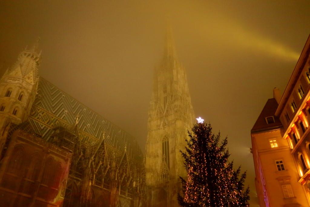 Vienna Christmas 5