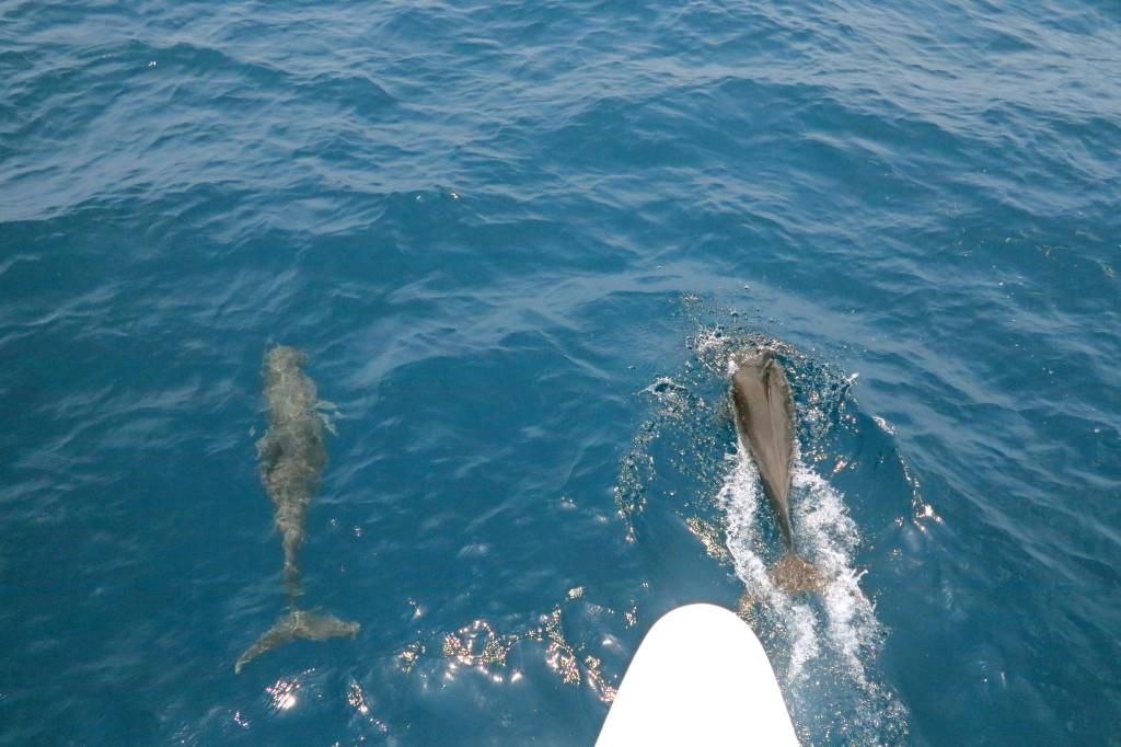 Sailing From San Blas 2