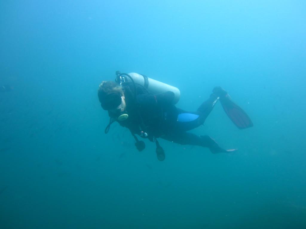 Galapagos Scuba Diving 2