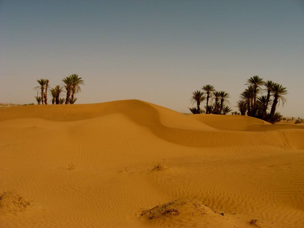 Sahara Morocco 9
