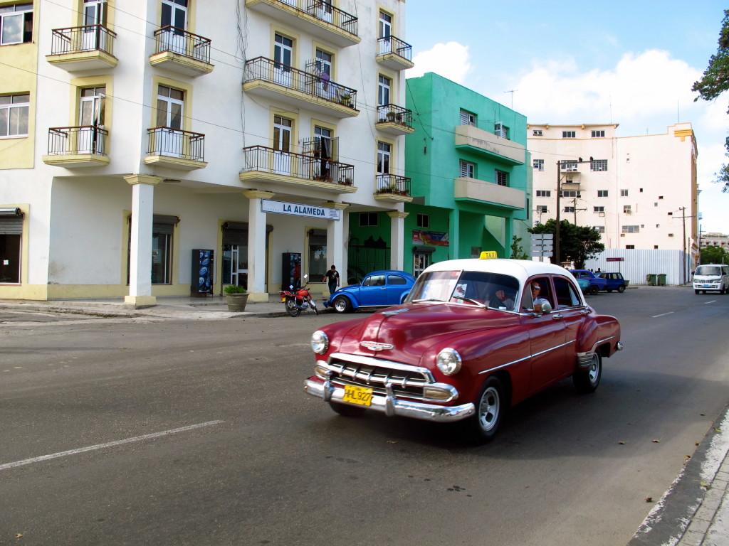 Cuban Violet