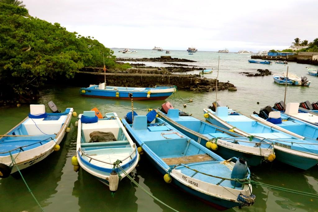 Galapagos Blue 2