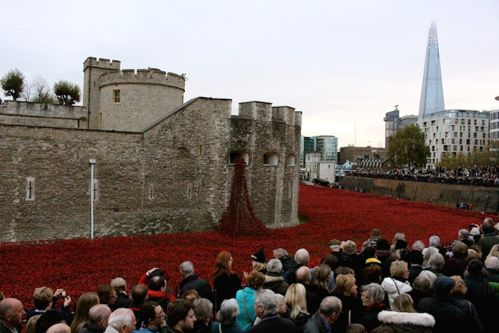 Tower of London Poppies 4