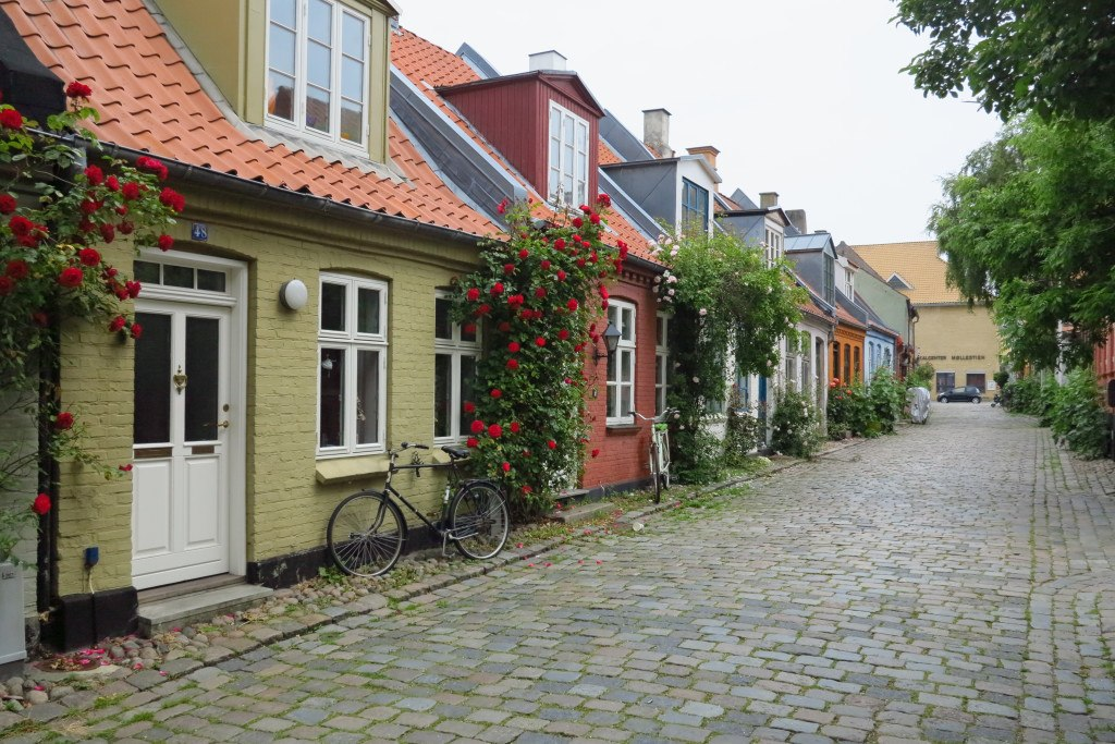 Bicycles in Denmark 10