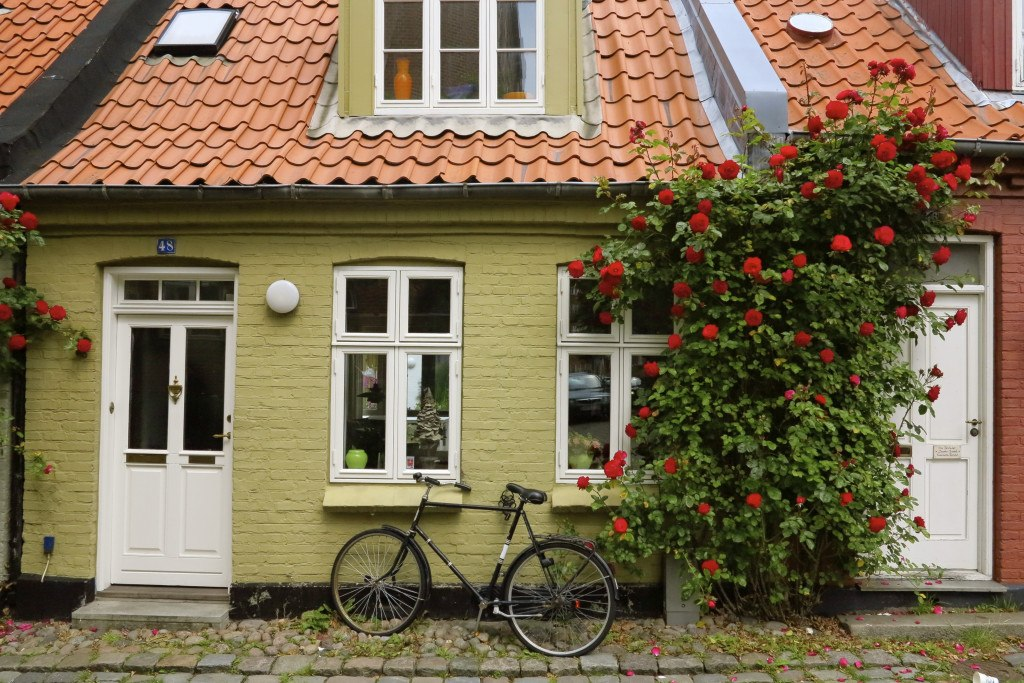 Bicycles in Denmark 5
