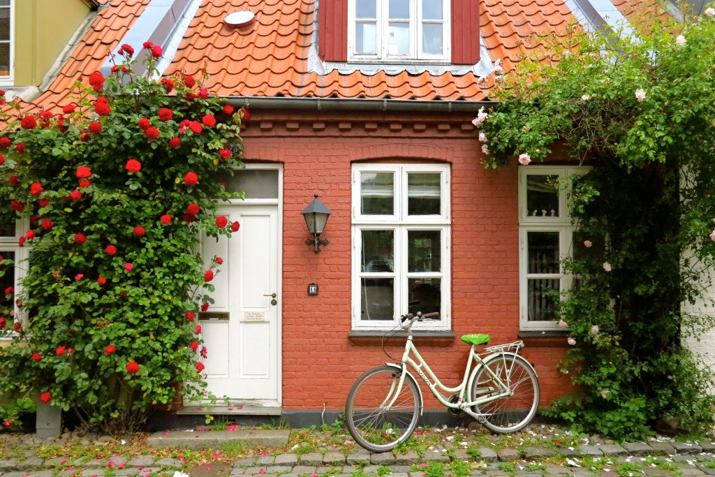 Bicycles in Denmark 6