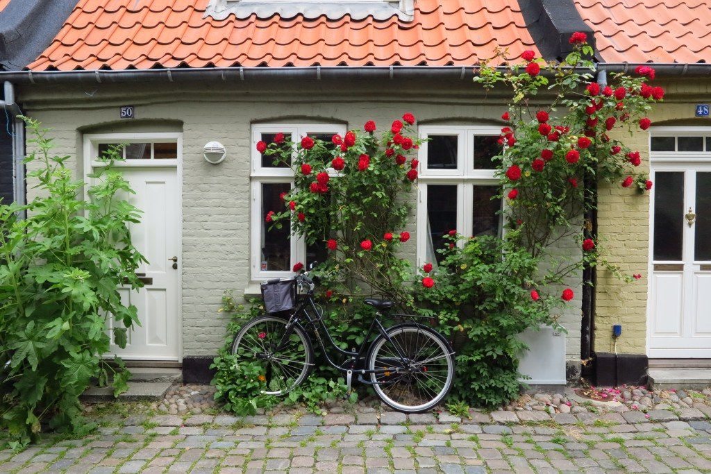 Bicycles in Denmark 9