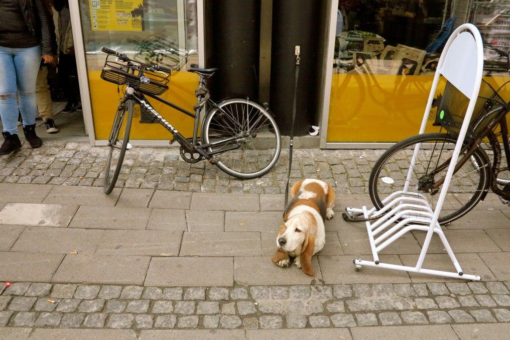 Things to do in Copenhagen 43