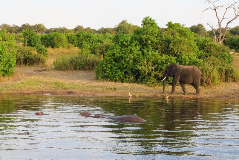 Botswana 52