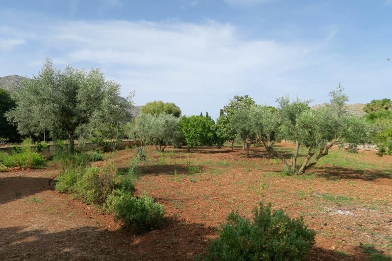 Mallorca 2016 - 13 of 16