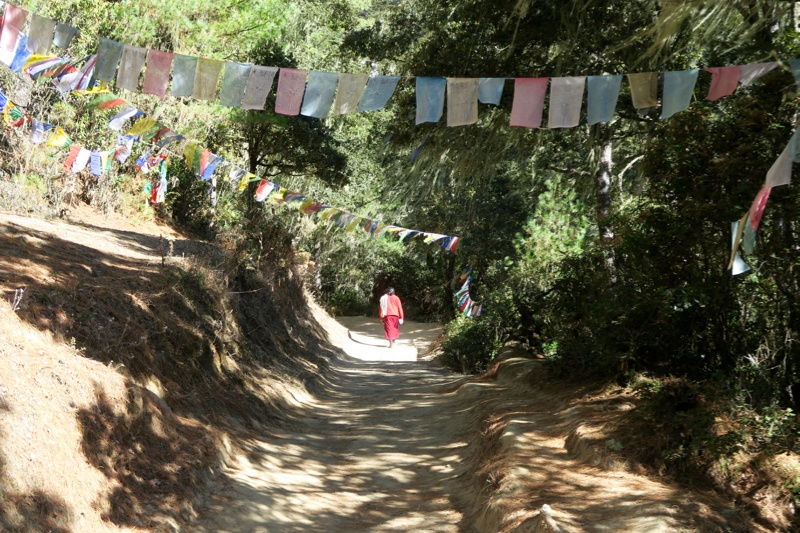Hiking to Tiger's Nest Bhutan - 13 of 34