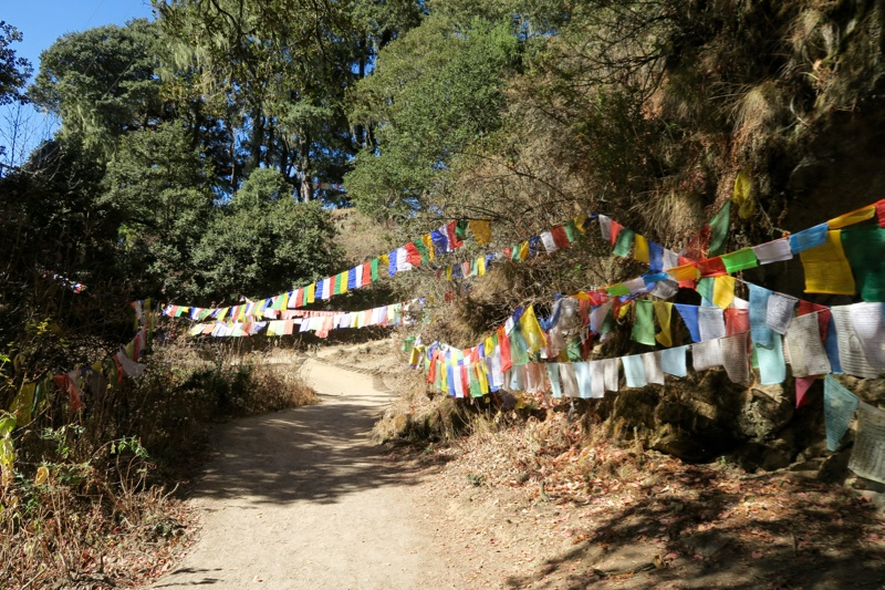 Hiking to Tiger's Nest Bhutan - 29 of 34