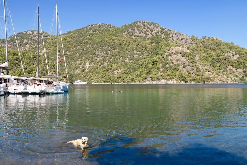 sailing-in-gocek-turkey-11-of-28