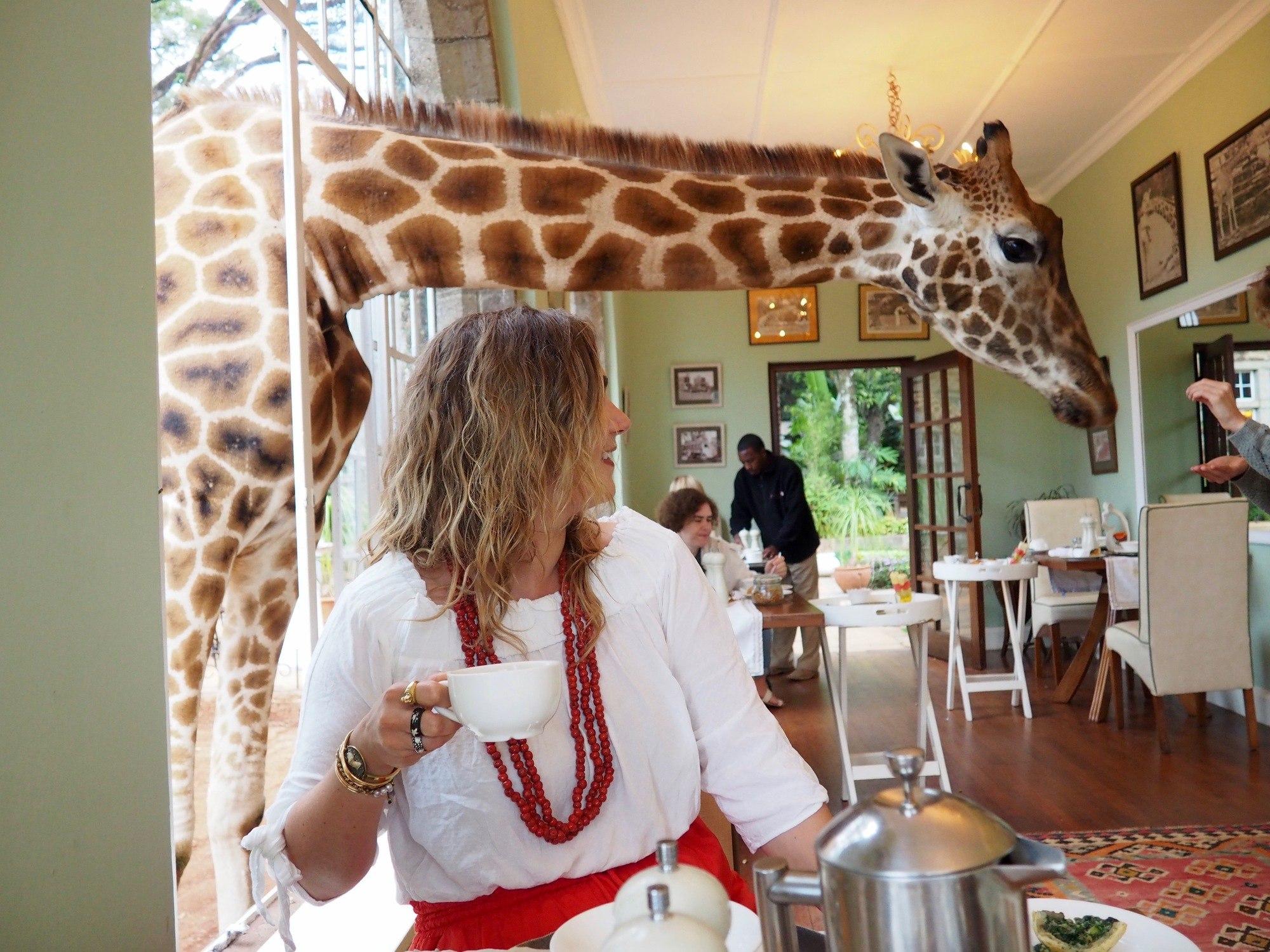 Giraffe Manor Nairobi Kenya