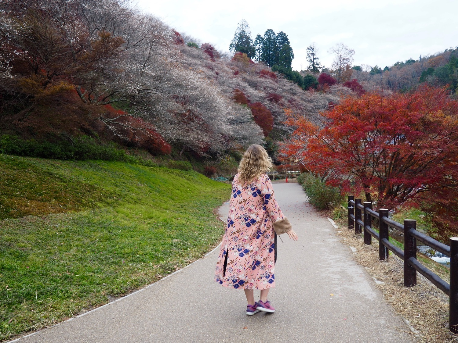 walking through autumn leaves and cherry blossoms Japan