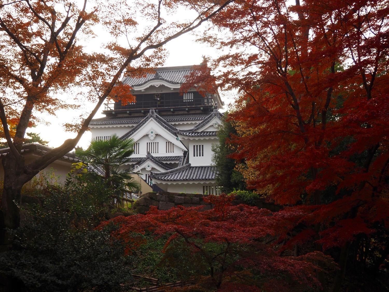 Okazaki Castle leaves