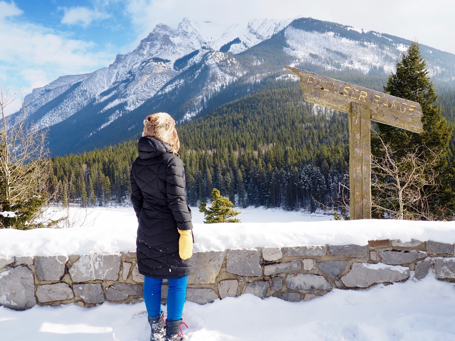 Canadian winter Rocky Mountains