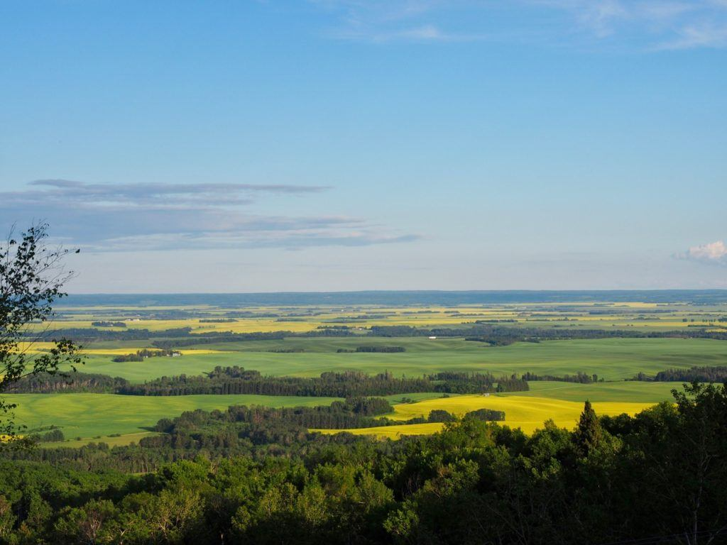 things to do in Swan Valley Manitoba