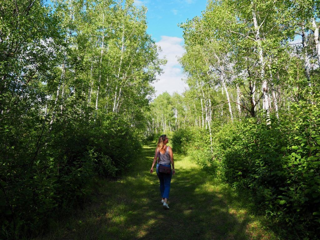 Rex Leach Museum Trail Manitoba
